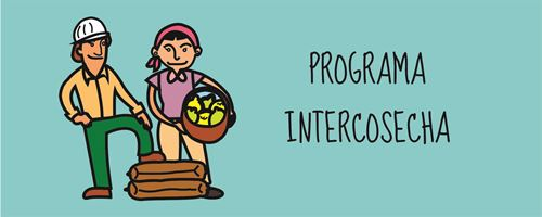 Programa Intercosecha