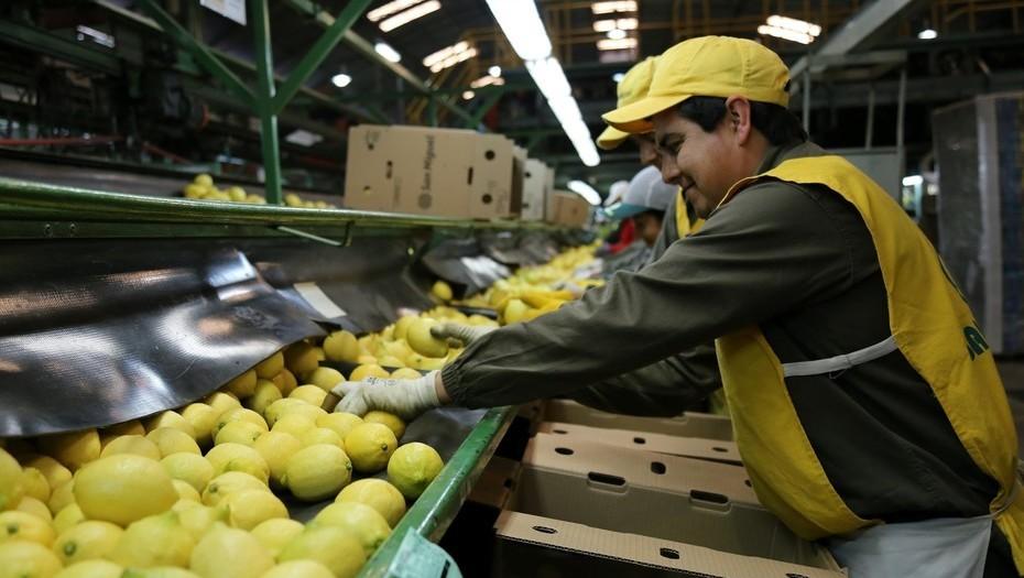 Tucumán registró 23 meses de crecimiento económico