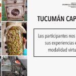 Participantes de Tucumán Capacita nos cuentan sus experiencias en la modalidad virtual